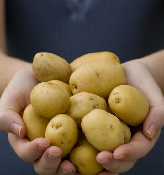 Creamer potatoes are one of the best sources of potassium in the entire vegetable world
