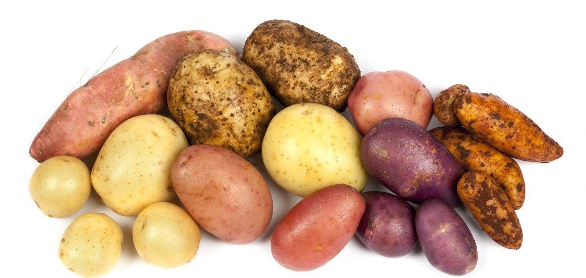 Are All Potatoes Created Nutritionally Equal?